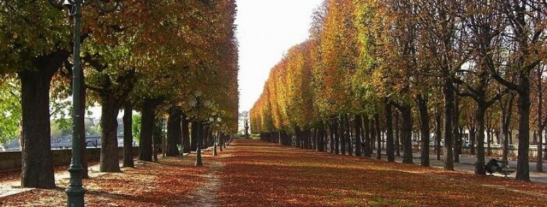 Co robić jesienią w Paryżu?