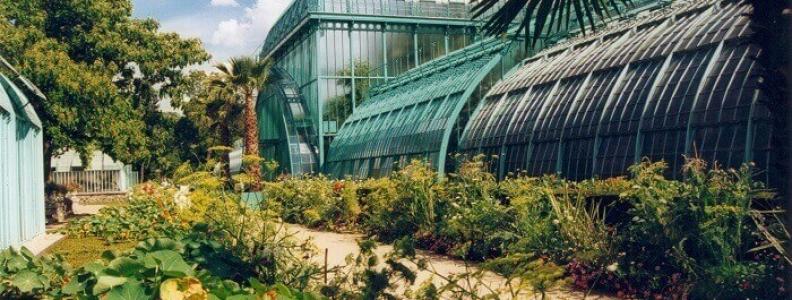 Jardin des serres d'Auteil: ogród z niezwykłymi szklarniami